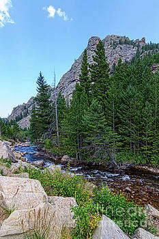 James BO Insogna - Rocky Mountain Chipmunk Paradise