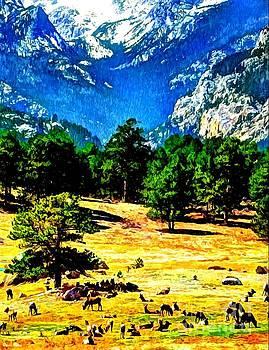 Rocky Mountain Elk by Dani Stites