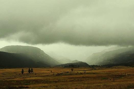 Rocky Mountain Fog by Pat Norton Toman