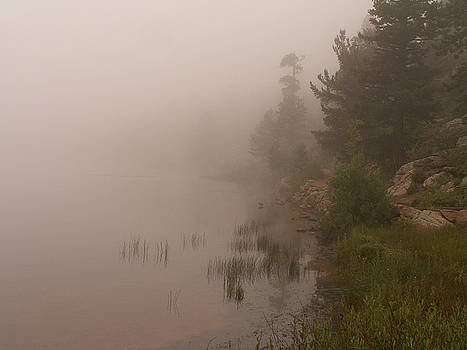 Rocky Mountain Fog by Theresa Willingham