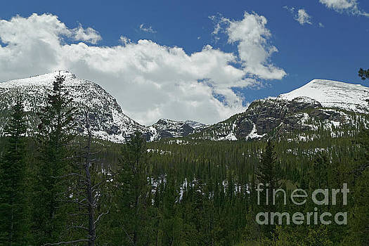 Rocky Mountain Landscape 4 by Natural Focal Point Photography