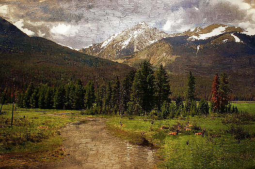 Rocky Mountain National Park by Scott Fracasso