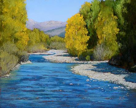 Rocky Mountain Stream by Xenia Sease