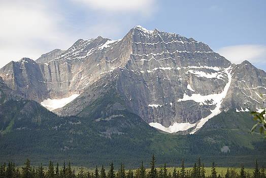 Rocky Mountain summer by Glen Frear