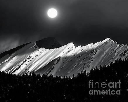 Rocky Mountains in Moonlight by Elaine Hunter