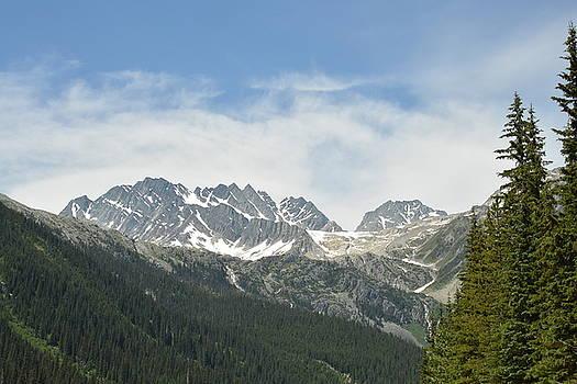 Rocky Mountains  by Nicki Bennett