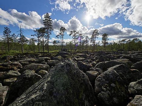 Rocky Offroad. Boulderfield by Jouko Lehto