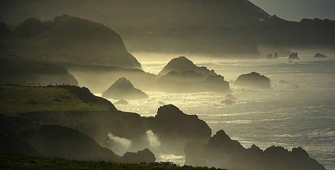 Joyce Dickens - Rocky Point Big Sur On A Foggy Day