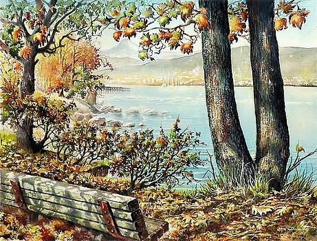 Rocky Point  Park View by Dumitru Barliga