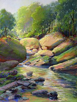 Rocky Ravine by Marsha Savage