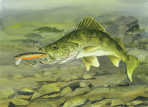Rocky Reef Walleye by Bud Bullivant