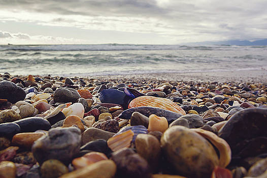 Rocky Shore by April Reppucci