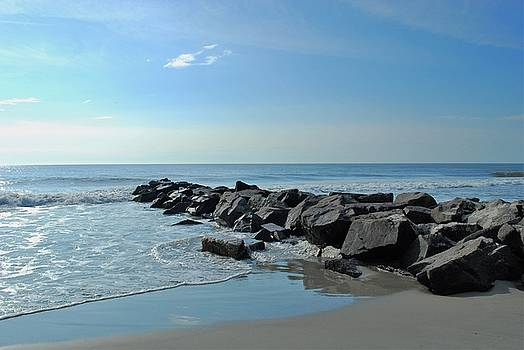 Rocky Shore by Jessica Wallace
