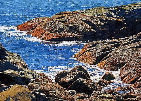 Rocky Shore by John Ellis