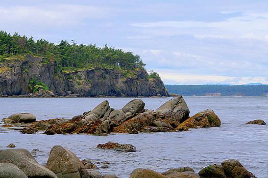 Art Block Collections - Rocky Shore of Orcas Island
