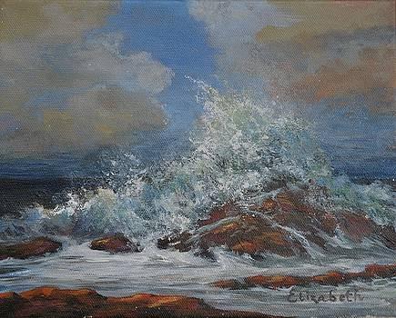 Rocky Shore Splash by Beth Maddox