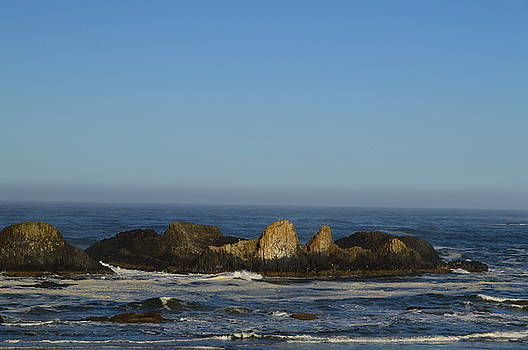 Rocky Shoreline II by Sue Houston