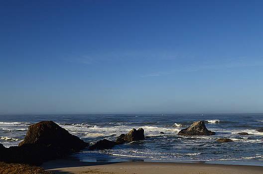 Rocky Shoreline by Sue Houston