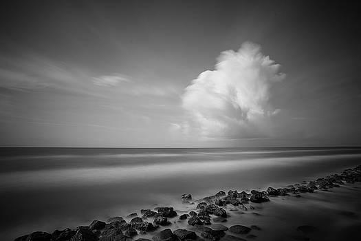 Todd Aaron - Rocky Shoreline