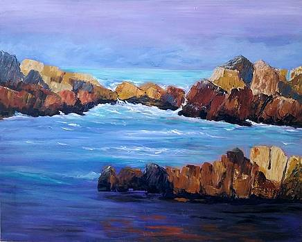 Rocky Shores by Rosie Sherman