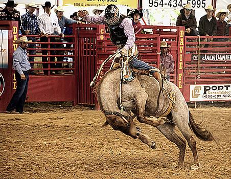 Rodeo Bronco Rider by Allan Einhorn