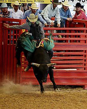 Rodeo Bull Rider by Allan Einhorn