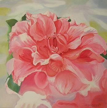 Rododendron by Ewald Smykomsky