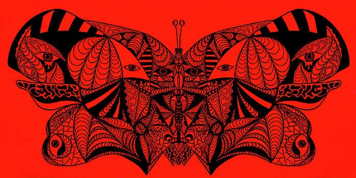 Roger The Butterfly by Kenal Louis