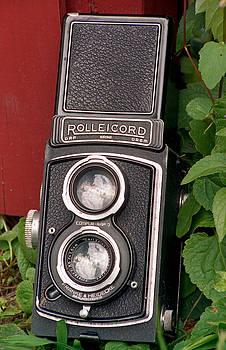 Rolleicord by Lonnie Paulson