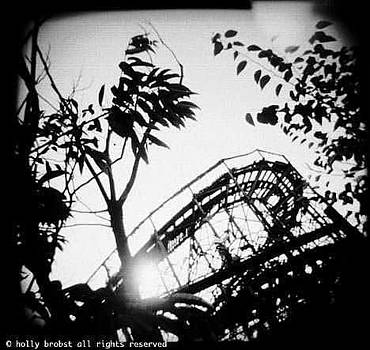 Rollercoaster by Holly Brobst