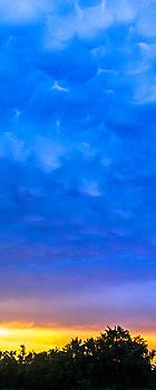 Rolling Blue by Laura Wiksten