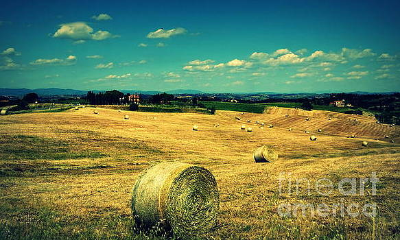 Rolling Fields of Tuscany by Lainie Wrightson