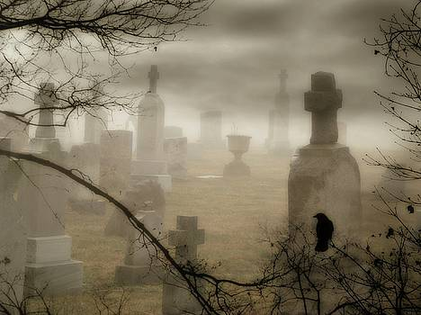 Rolling Graveyard Fog  by Gothicrow Images