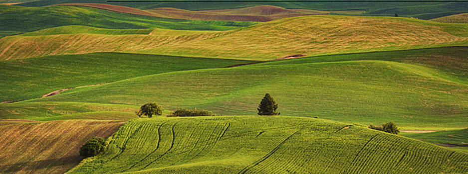 Rolling Hills of the Palouse by Jerry Fornarotto