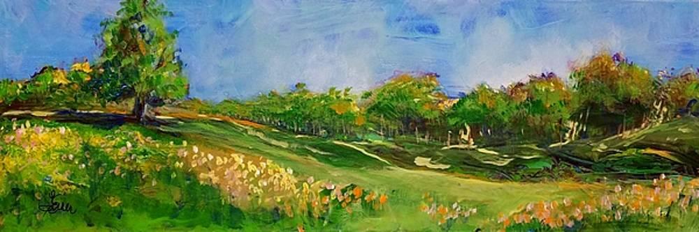 Rolling Hills by Terri Einer