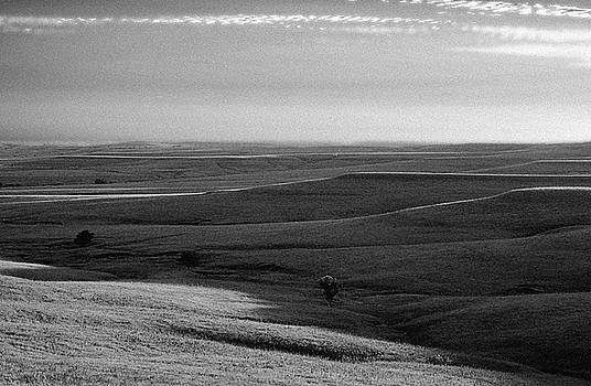 Rolling Hills by Thomas Bomstad