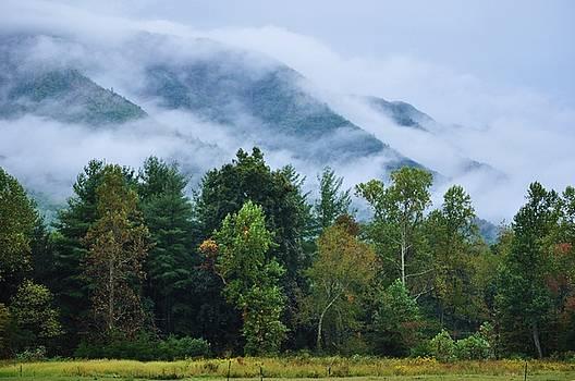 Rolling Mist by Jeff Moose