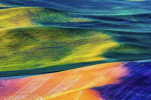 Rolling wheat hill - Palouse by Hisao Mogi