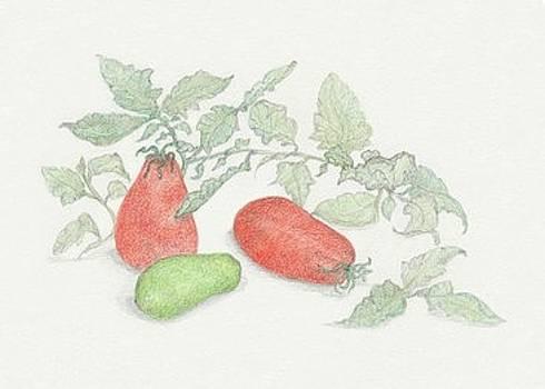 Roma Tomatoes by Tara Poole