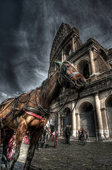Roman Colosseum 2 by Miguel Pardo
