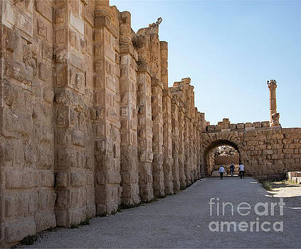 Roman Ruins at Jerash, Jordan  by Mae Wertz
