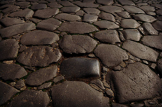 Romans Walked Here by Eric Liller