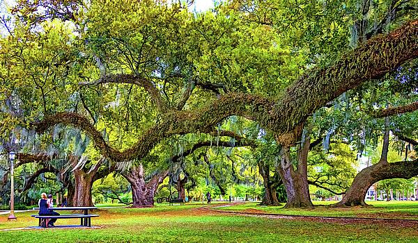 Steve Harrington - Romantic City Park - New Orleans - Paint