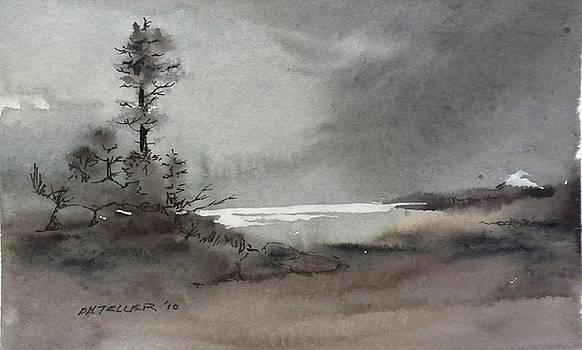 Romantic Landscape by Douglas Teller