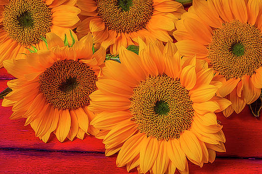 Romantic Sunflowers by Garry Gay