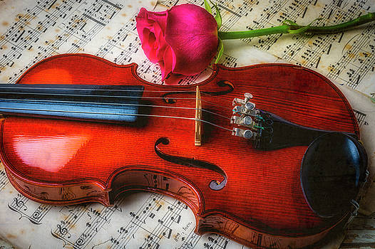 Romantic Violin And Rose by Garry Gay