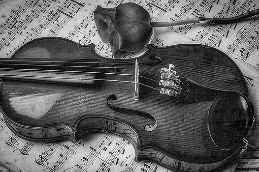 Romantic Violin And Rose In Black And White by Garry Gay