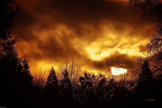 Mick Anderson - Romantic Winter Sunrise