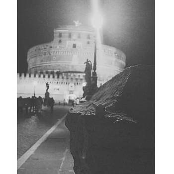 #rome #1000cranes #origamicrane by Anna Harland