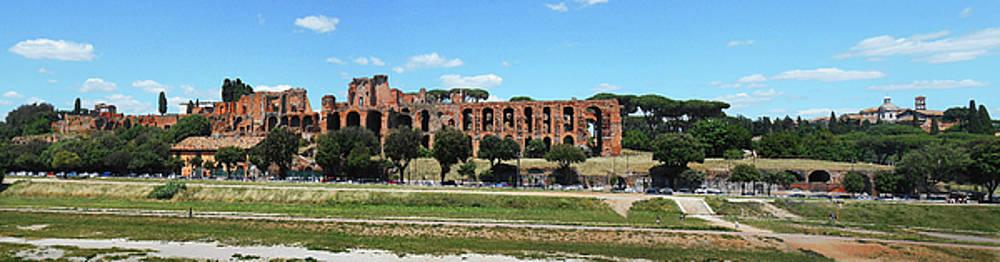 Rome Ruins Panorama Circus Maximus by Irina Sztukowski